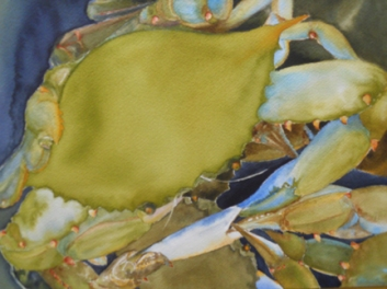 Watercolor by Wan Lee: Beautiful Swimmer. Helen Wade Carey Best in Show, Capitol Hill Arts Workshop Student Show, 2012