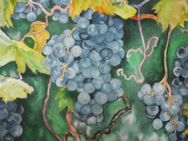 Watercolor by Wan Lee: Fruit of the Vine. Honorable Mention, Capitol Hill Arts Workshop Student Show, 2011