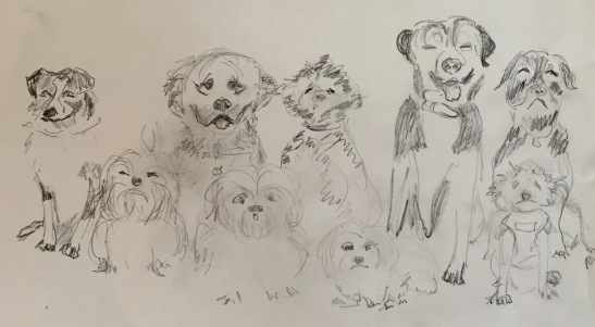 "Anne Shields: ""The Dog Line-up,"" pencil"