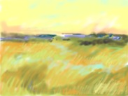 Marta Pope: Golden fields sketch, iPastel app on iPadl