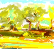 Martha Pope: Summer trees sketch, iPastel app on iPad