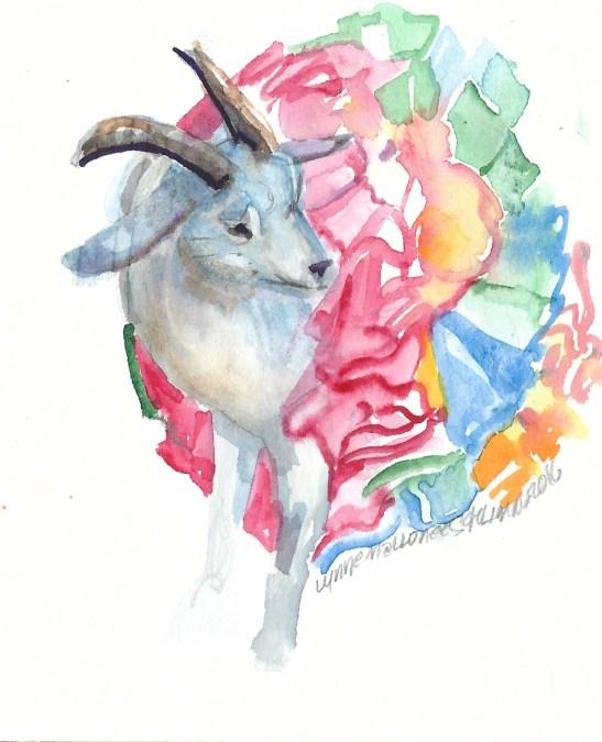 Lynne--goat