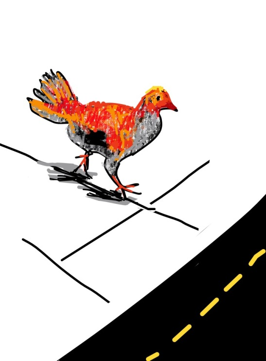 Tara Why does the Chicken Cross the Road