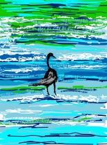 Tara Hamilton: Bird in Surf, iPad.