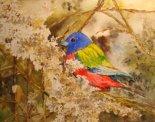 Linda Norton: Watercolor