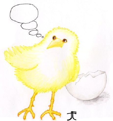 thoughtful-chick_tee