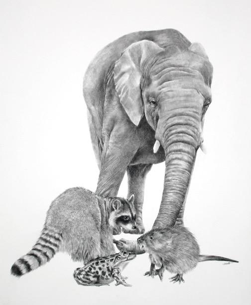 ellen-cornett-the-elephant-in-the-room