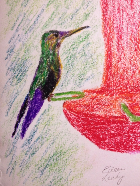 Eileen Leahy Hummingbird in Costa Rica wax pastels