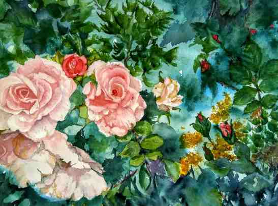 Linda Norton First Blush Watercolor