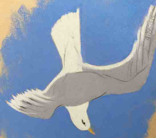 Anne Shields Iceland Gull over Cape Cod Bay Pastel on construciton paper
