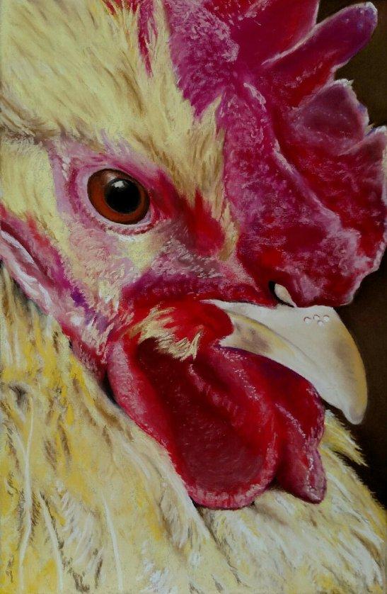 Fran Tomlinson Eye of the Chicken
