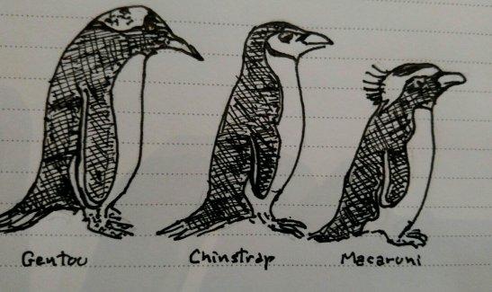 Fran Tomlinson 3 antarctic penguins