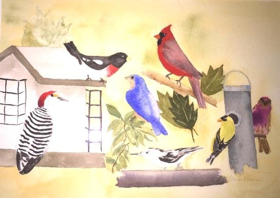 Kristyn's Birds