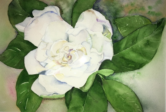 Lynne Mallonee Schlimm lone gardenia