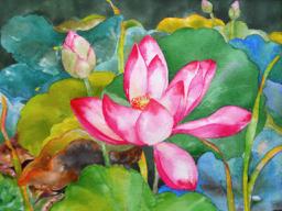 Wan Lotus 2010