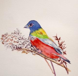 Tara Hamilton Kaleidescope Bird
