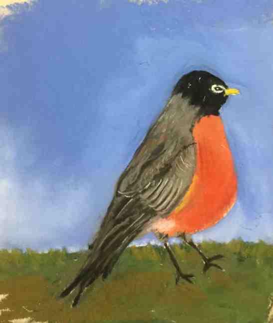 Anne Shields Robin pastel