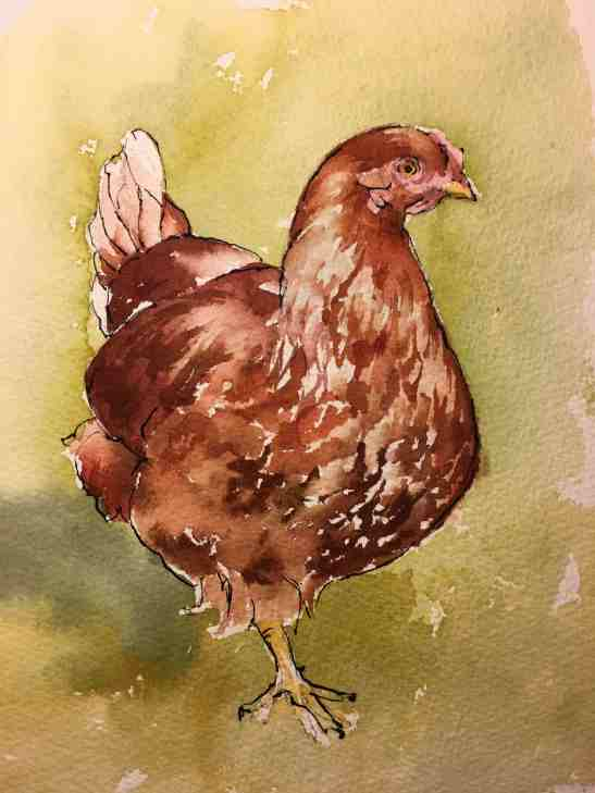 Ellen Cornett Red Rooster Watercolor