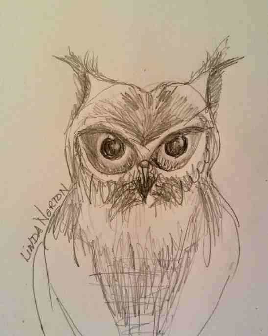 Linda Norton Owl pencil