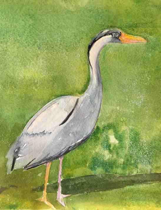 Lynne Mallonee Schlimm heron watercolor