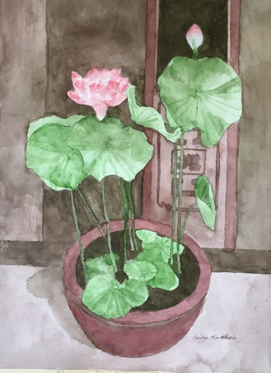 Carolyn Rondthaler LOTUS watercolor