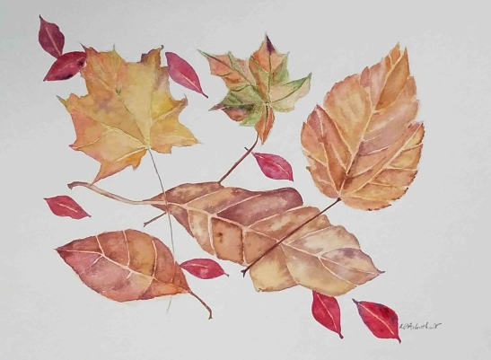 Nancy Arbuthnot Fallen Leaves