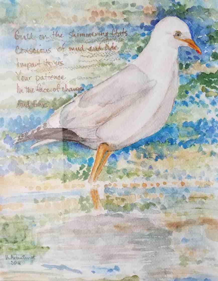 Nancy Arbuthnot Gull on the Simmering Flats