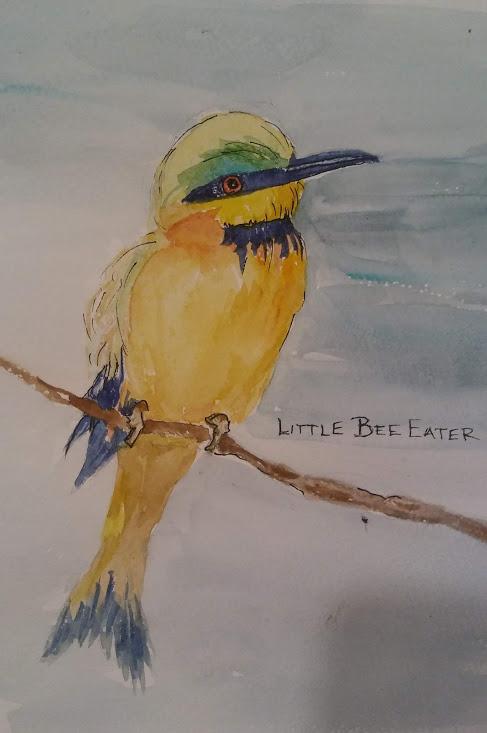 Linda Norton Little Bee Eater