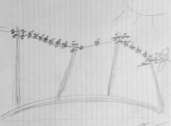 Torsten Jahr Birds on a Wire
