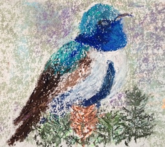 Eileen Leahy: Blue-Throated Hillstar, Equador. Pastel. This bird is a new species just identified October 1, 2018.