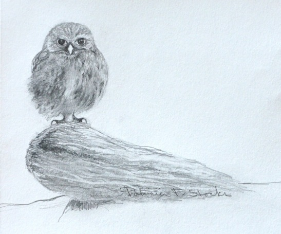 Pat Stocks Baby Owl Pencil