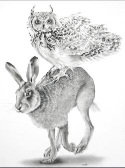Ellen Cornett: Owl's Journey. Carbon pencil.