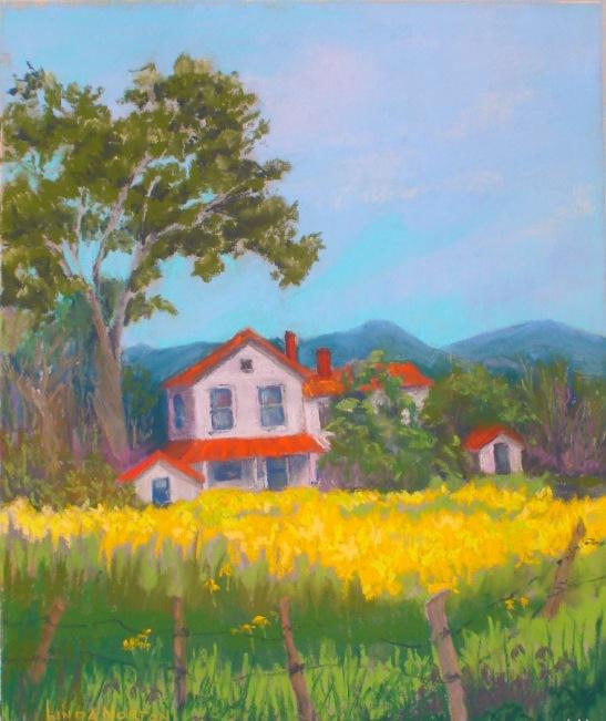 Linda Norton Yellow Field